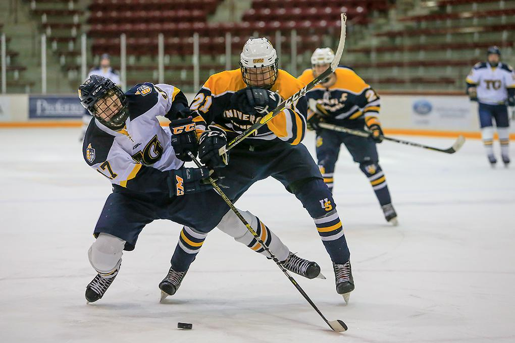 Totino-Grace defenseman Colin Neilsen (17) got knocked off course by University School of Milwaukee junior Casey Roepke. Photo by Mark Hvidsten, SportsEngine