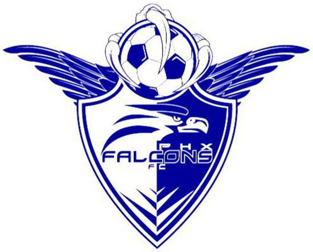 Phoenix falcons usa phoenix falcons fc is a registered member of major league futsal usa they represent the city of phoenix of the state of arizona located in the us buycottarizona Choice Image