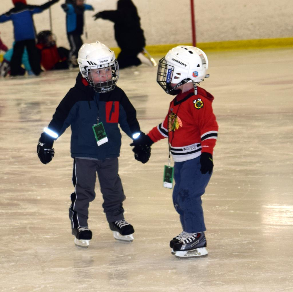 Learn To Skate January 2017