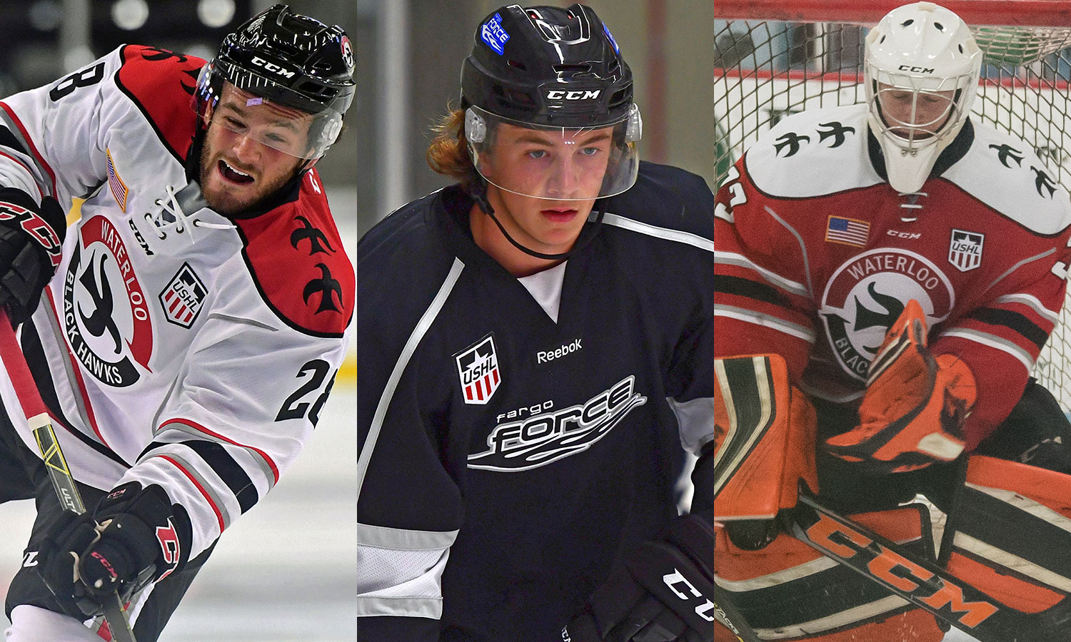 USHL: Players Of The Week