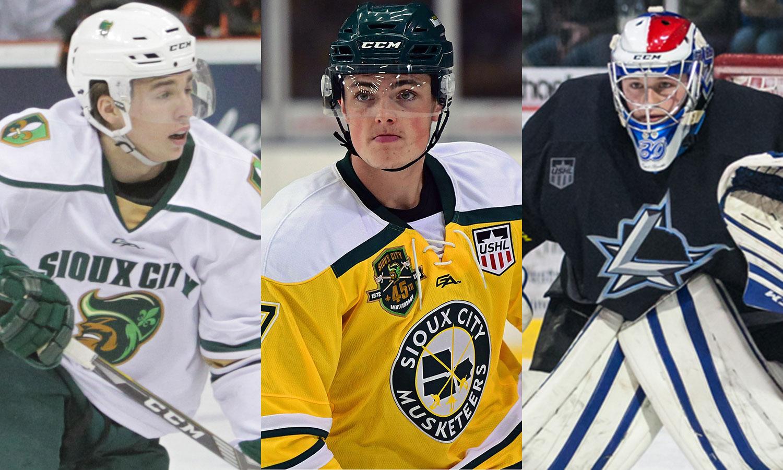 USHL: Players Of The Week - Week 27