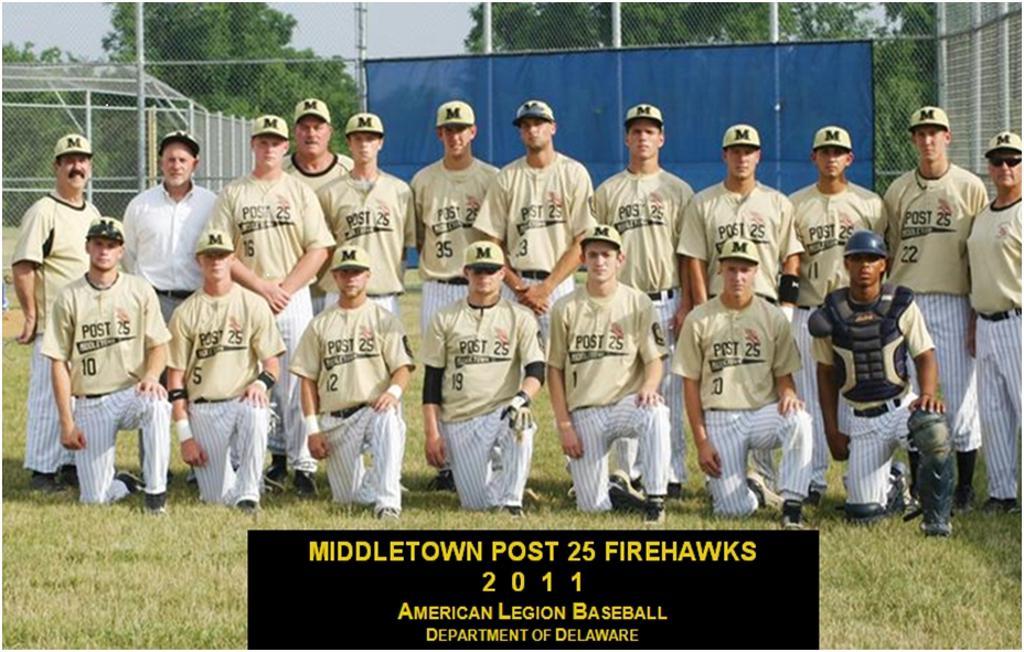 Delaware american legion baseball