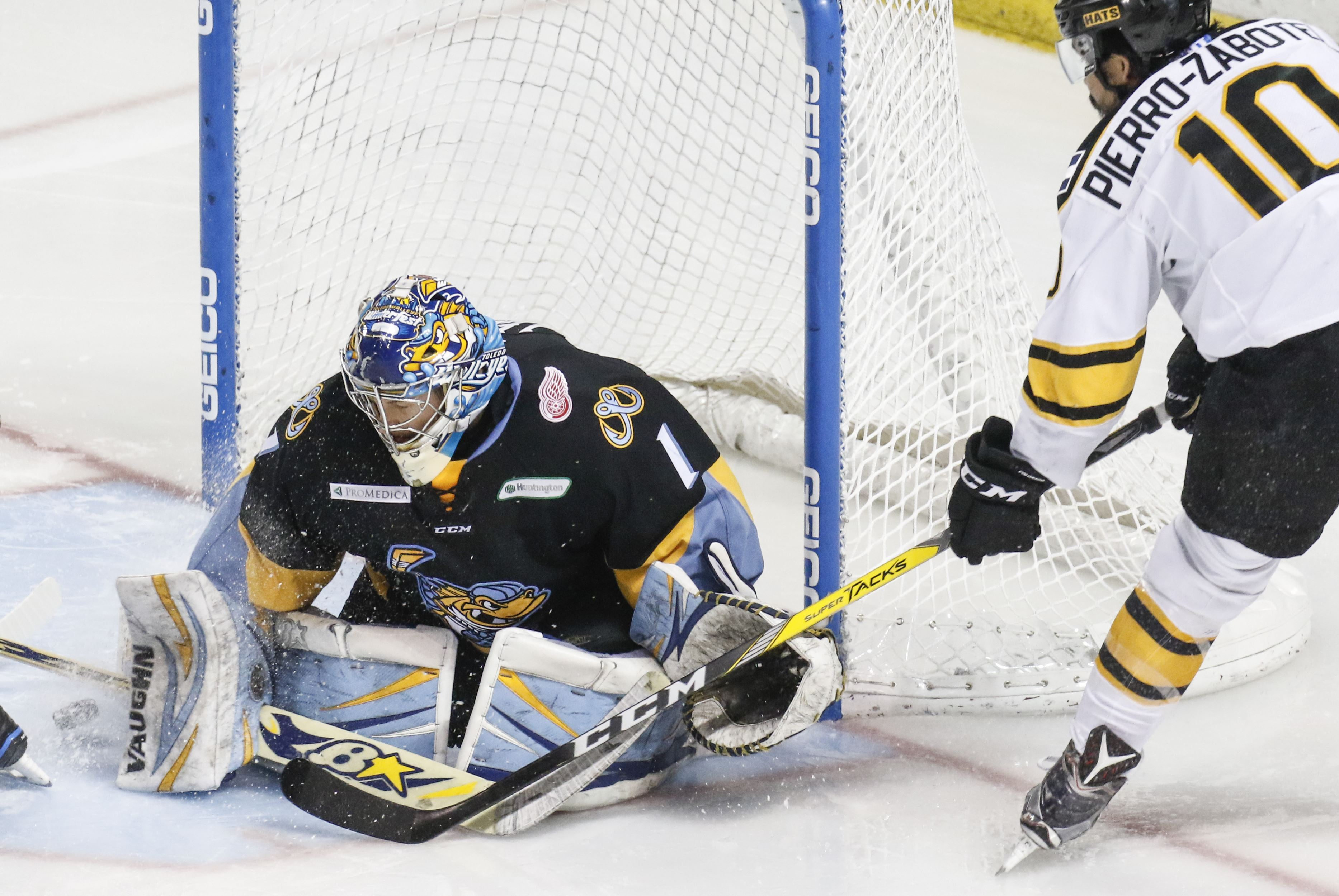 ECHL: Toledo's Lerg Decides To Go Back Overseas Next Season - To Play For France's Gap Rapaces