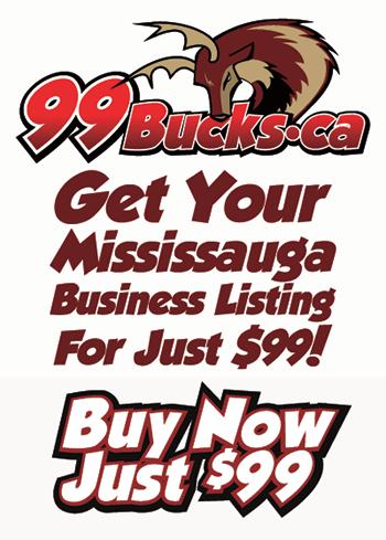 Mississauga Website Design and Mississauga Logo Design and Mississauga Brochure Design and Mississauga News and Mississauga Newspaper - Mississauga Media Company and Mississauga Graphic Design