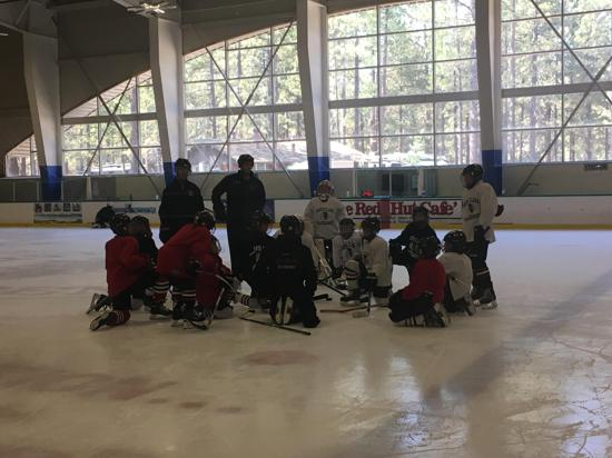 12U1 on the ice