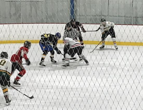 Lyons Township Hockey Club