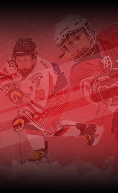 AAA Hockey Challenge Logo