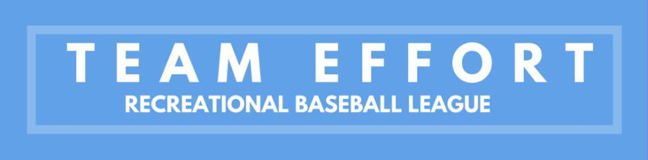 Team Effort Baseball