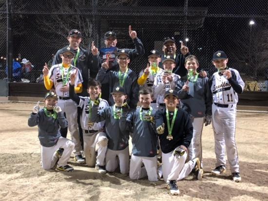 Sandlot Baseball & Softball Academy