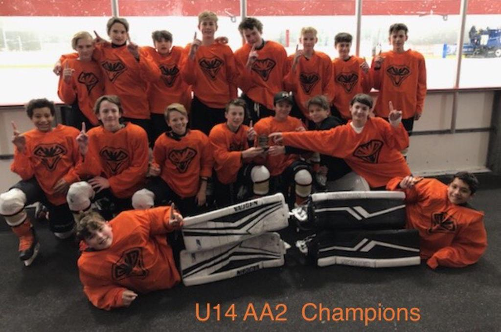 Spring U14 AA2 Champs