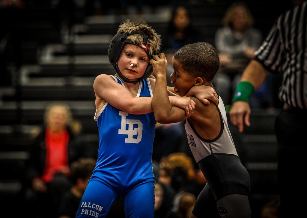 Lower Dauphin Youth Wrestling