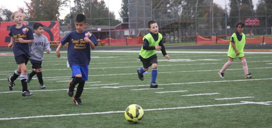 TFA U6-U8 Rec League offers opportunities in Sweet Home, Oregon and Brownsville, Oregon