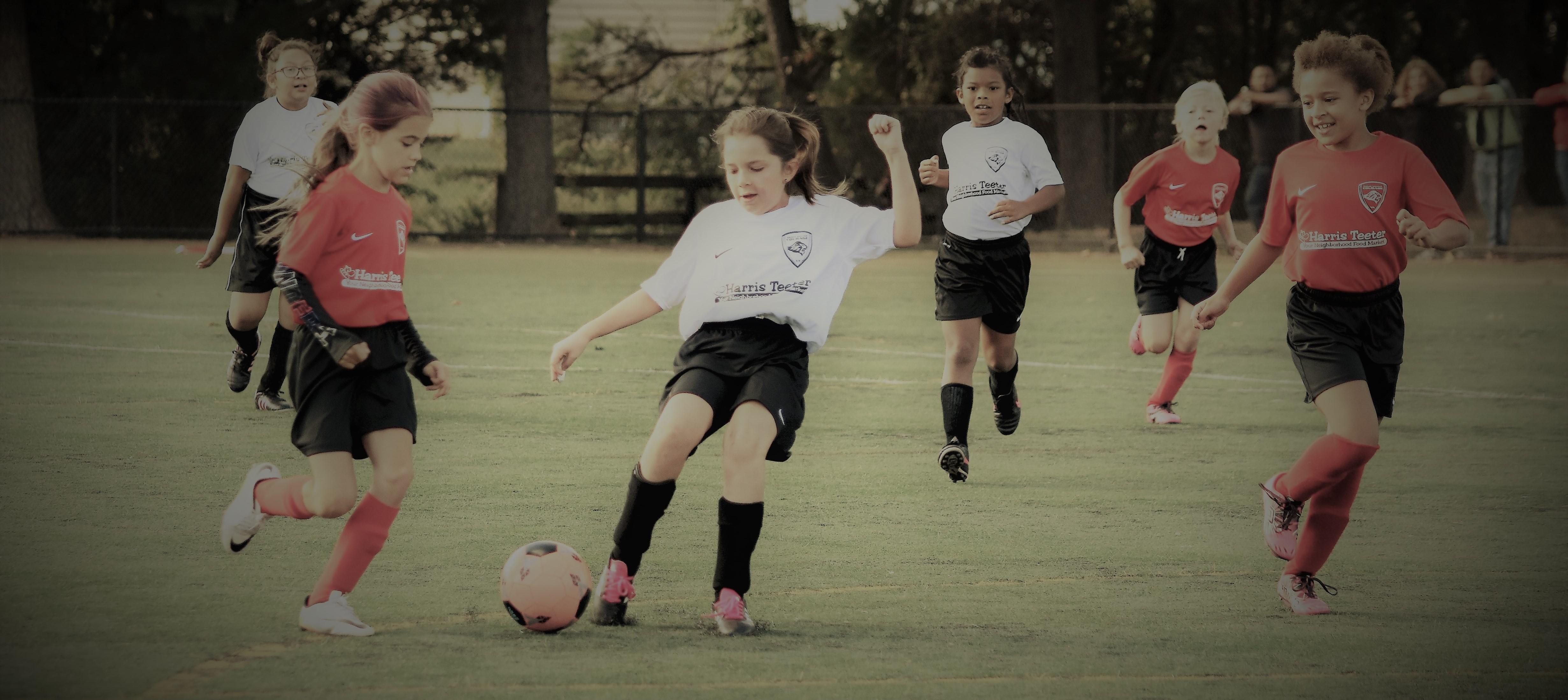 7f2c5fa6c Prince William Soccer Club