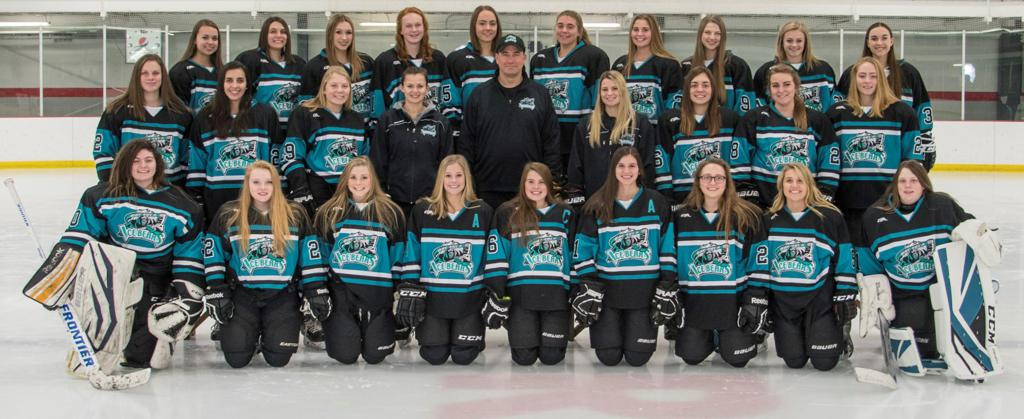 2018-2019 Ice Bears Girls Hockey Team