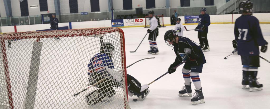 youth house league hockey palm beach