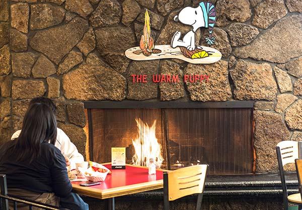 The Santa Rosa Cafe, The Warm Puppy