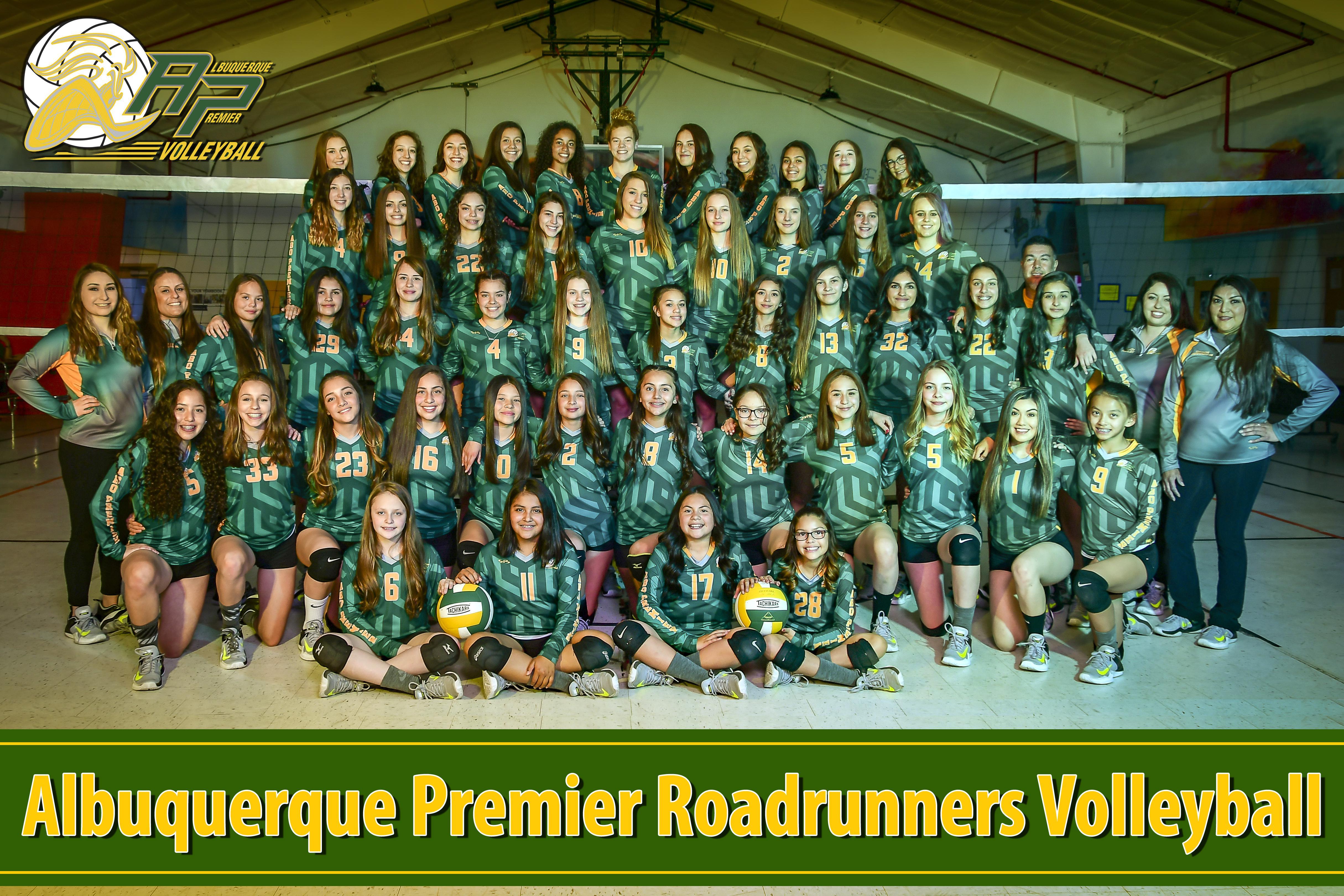 Albuquerque Premier Roadrunners Volleyball