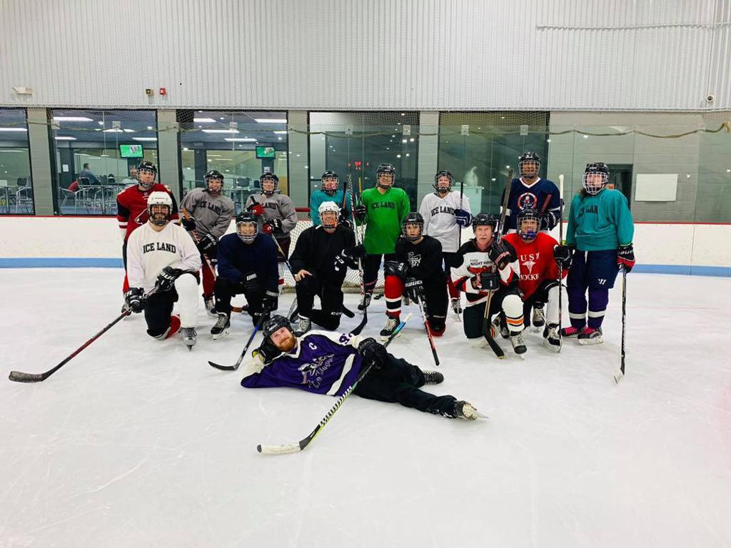Adult Learn to Play, Adult League Hockey