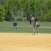 Baseball_apr_29_lets_gooo_012__2__small