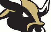 Bulls logo cropped medium