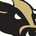 Bulls logo cropped small