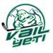 Yeti logo 2017 small