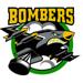 Bms logo 2 small