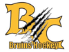 Sponsored by Battle Creek Ice Hockey Association