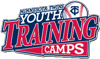 Youth training camps element view