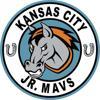 Jr mavs logo 2015 copy element view