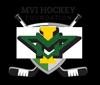 Sponsored by Lake Region Hockey