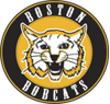 Boston bobcats element view