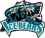 Bay Area Ice Bears