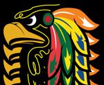 Summerhawks Logo