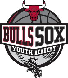 Bulls Sox Academy Logo